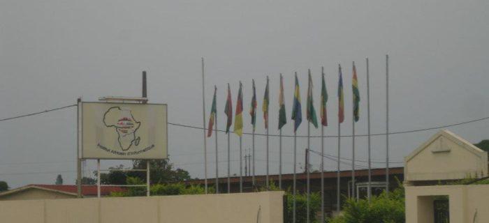 Les drapeaux des onze états hissés devant l'administration de l'Institut Africain d'Informatique